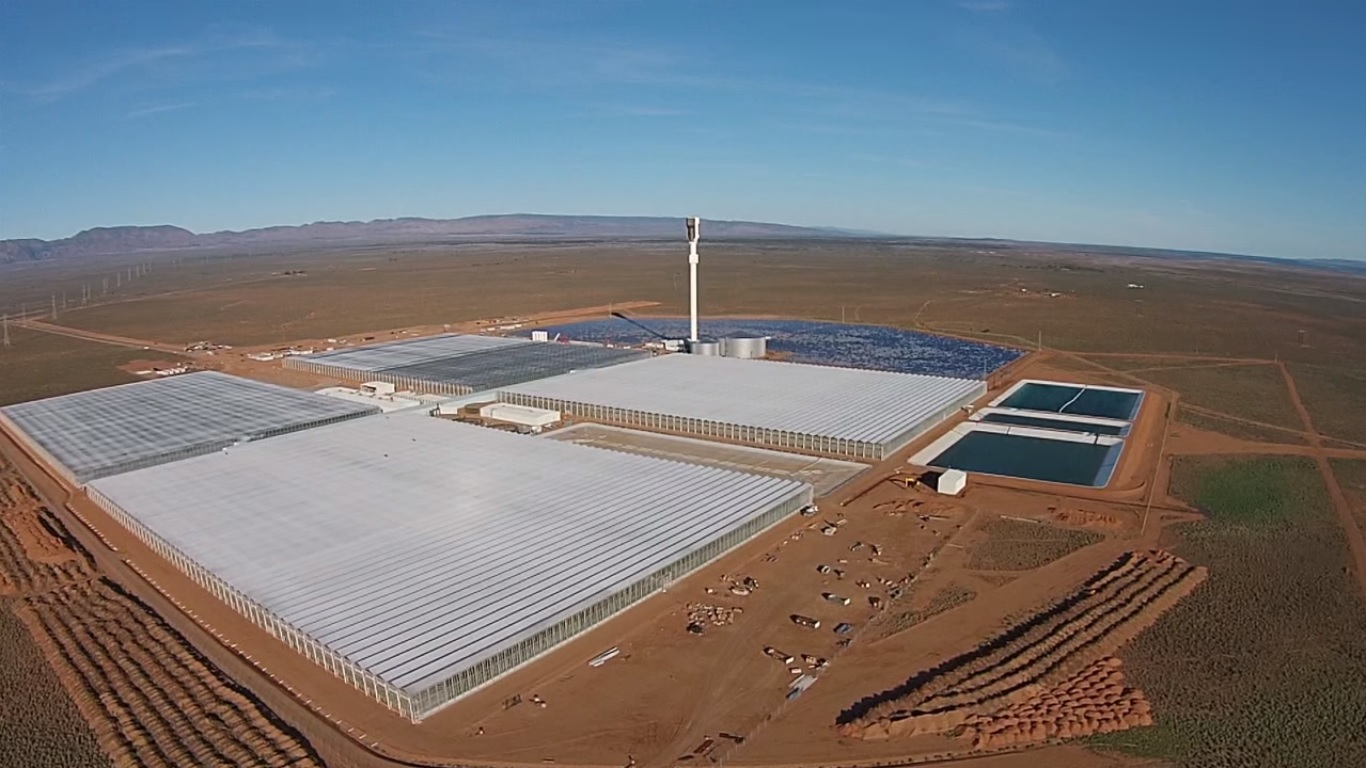 Die Sundrop-Farm in Port Augusta, Australien (Screenshot von Youtube)